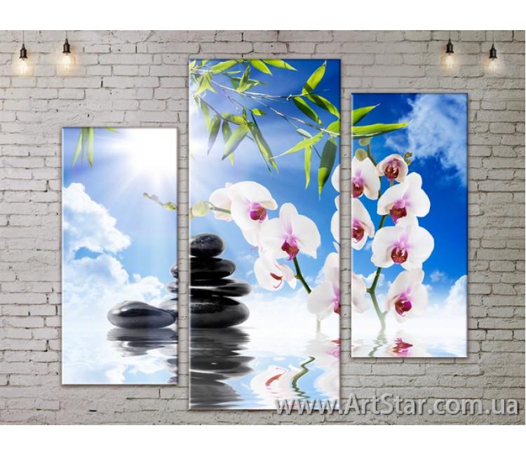 Модульные Картины, Цветы, Art. FLOW777257