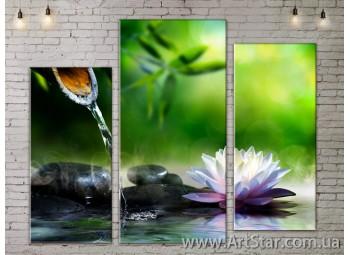 Модульные Картины, Цветы, Art. FLOW777269