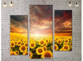 Модульные Картины, Цветы, Art. FLOW777275
