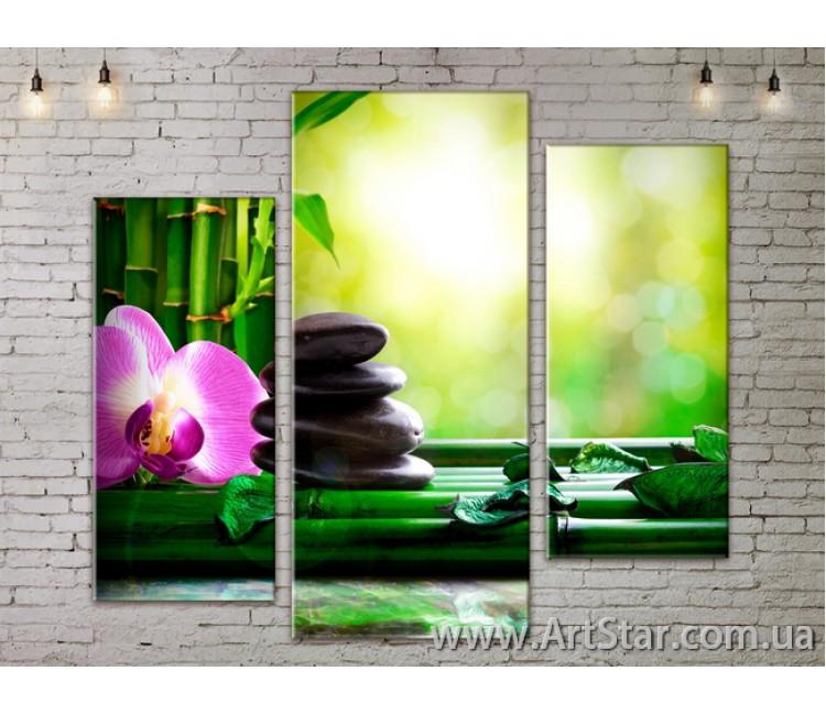 Модульные Картины, Цветы, Art. FLOW777277