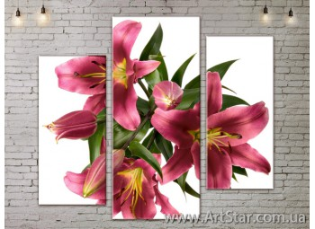 Модульные Картины, Цветы, Art. FLOW777279