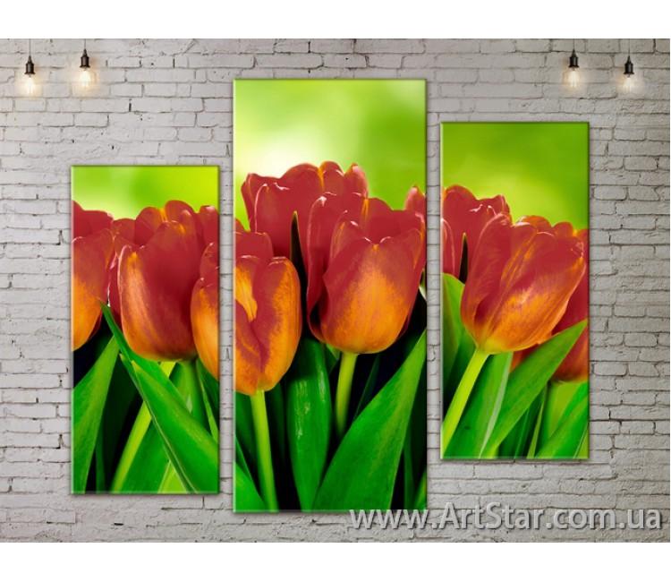 Модульные Картины, Цветы, Art. FLOW777283