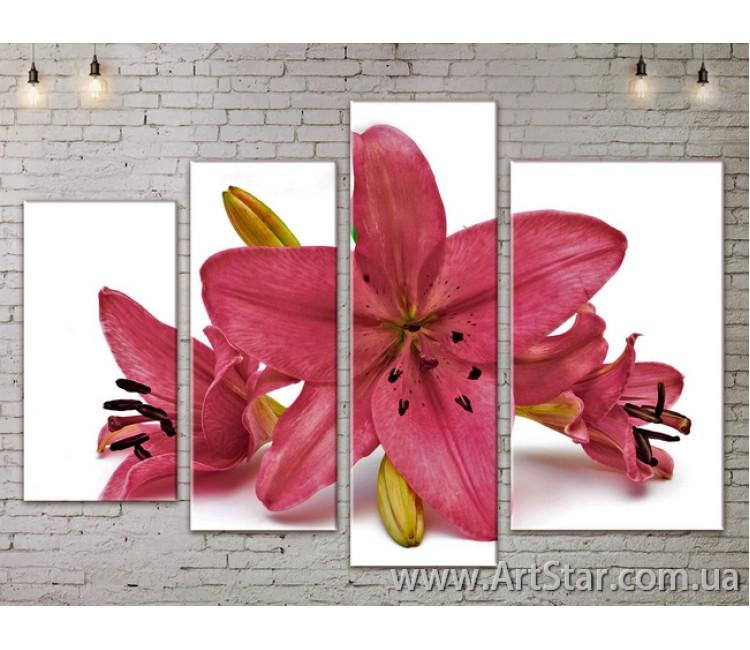 Модульные Картины, Цветы, Art. FLOW777288