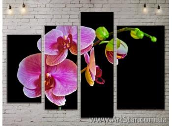 Модульные Картины, Цветы, Art. FLOW777292