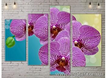 Модульные Картины, Цветы, Art. FLOW777308