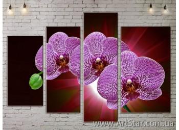 Модульные Картины, Цветы, Art. FLOW777310