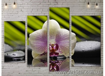 Модульные Картины, Цветы, Art. FLOW777322