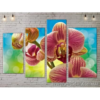 Модульные Картины, Цветы, Art. FLOW777362