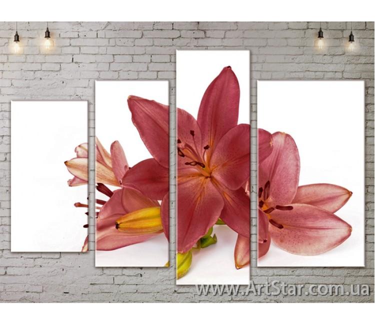 Модульные Картины, Цветы, Art. FLOW777368
