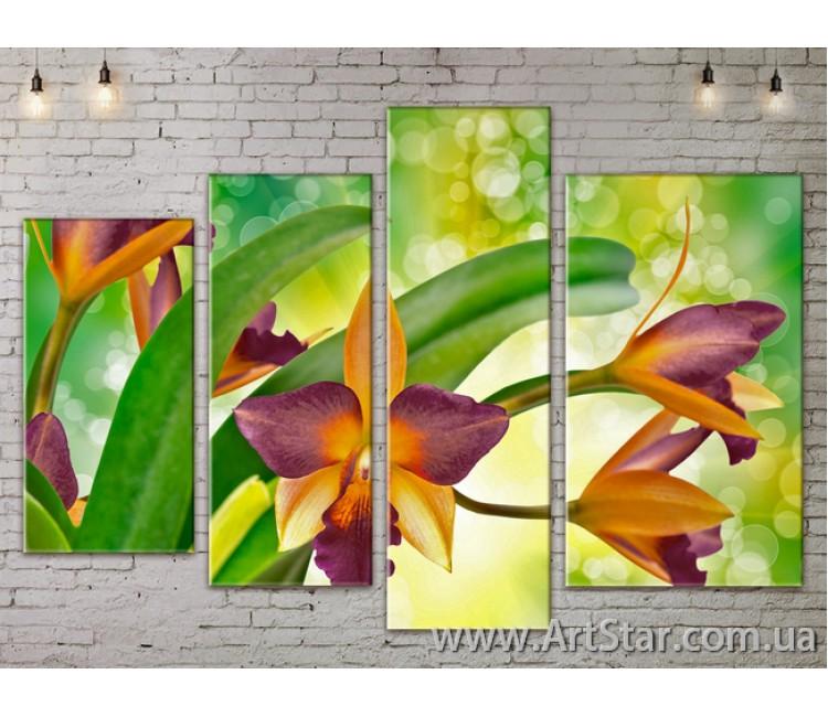 Модульные Картины, Цветы, Art. FLOW777370