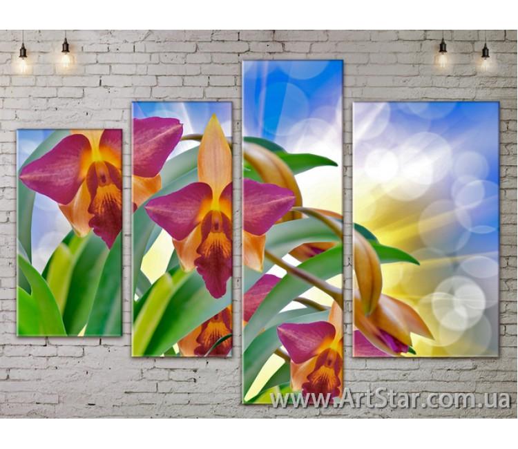 Модульные Картины, Цветы, Art. FLOW777374