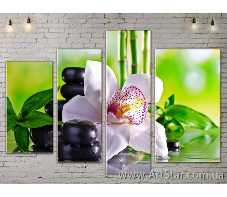 Модульные Картины, Цветы, Art. FLOW777382