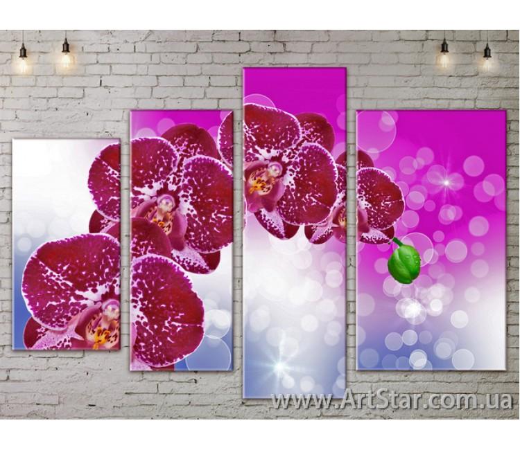Модульные Картины, Цветы, Art. FLOW777390