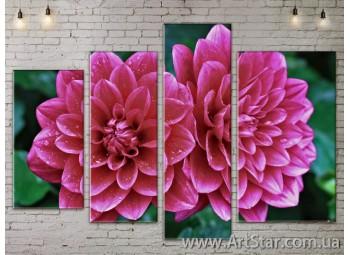 Модульные Картины, Цветы, Art. FLOW777392