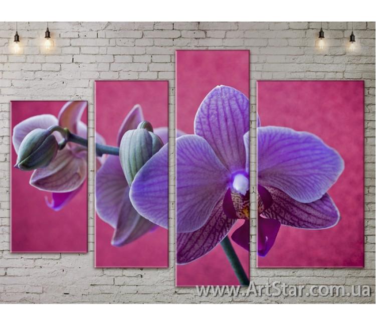 Модульные Картины, Цветы, Art. FLOW777420