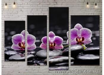 Модульные Картины, Цветы, Art. FLOW777424