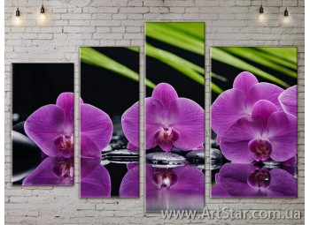 Модульные Картины, Цветы, Art. FLOW777440