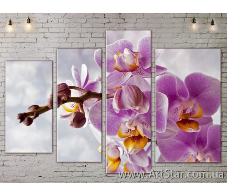 Модульные Картины, Цветы, Art. FLOW777456