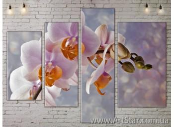 Модульные Картины, Цветы, Art. FLOW777458