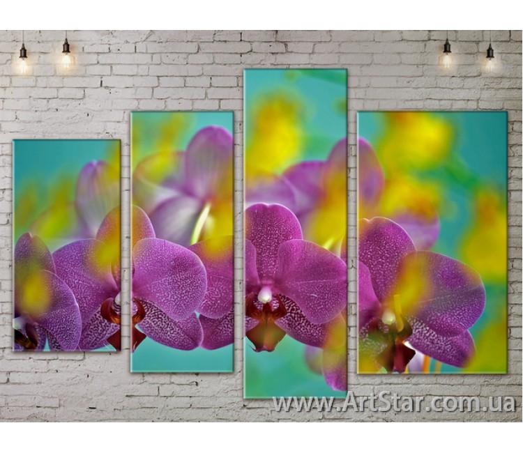 Модульные Картины, Цветы, Art. FLOW777462