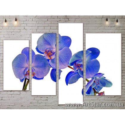 Модульные Картины, Цветы, Art. FLOW777464
