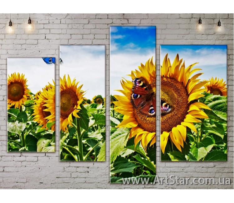 Модульные Картины, Цветы, Art. FLOW777470