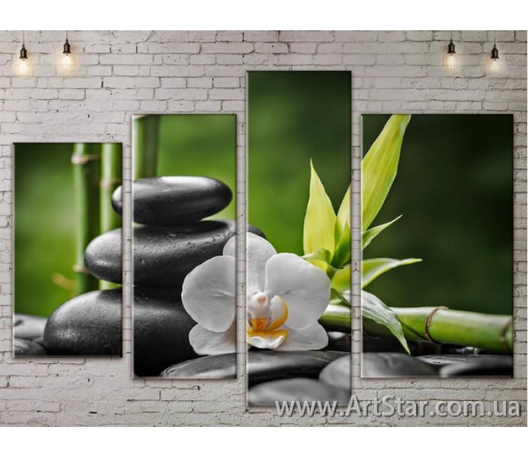 Модульные Картины, Цветы, Art. FLOW777482