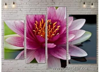 Модульные Картины, Цветы, Art. FLOW777490