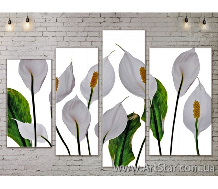 Модульные Картины, Цветы, Art. FLOW777498