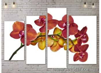 Модульные Картины, Цветы, Art. FLOW777502