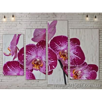 Модульные Картины, Цветы, Art. FLOW777510