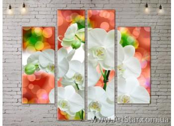 Модульные Картины, Цветы, Art. FLOW777528