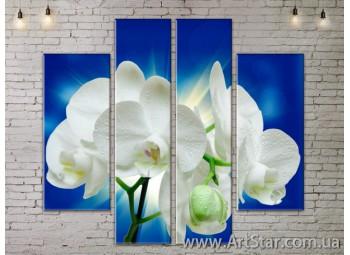 Модульные Картины, Цветы, Art. FLOW777530
