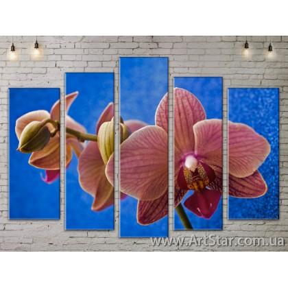 Модульные Картины, Город, Art. FLOW777688