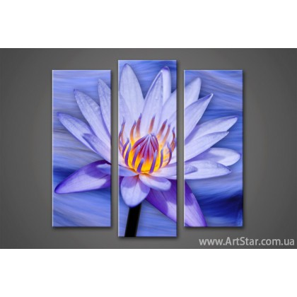 Модульная картина Цветы Лилии 4