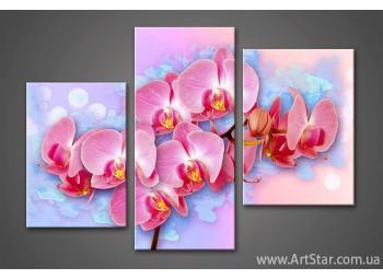 Модульная картина Цветы Орхидеи
