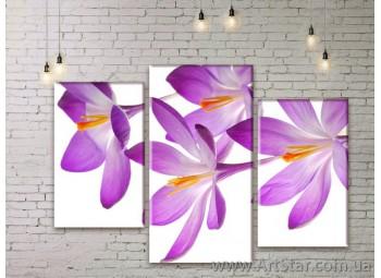 Модульные Картины Цветы, Art. FLWM0001