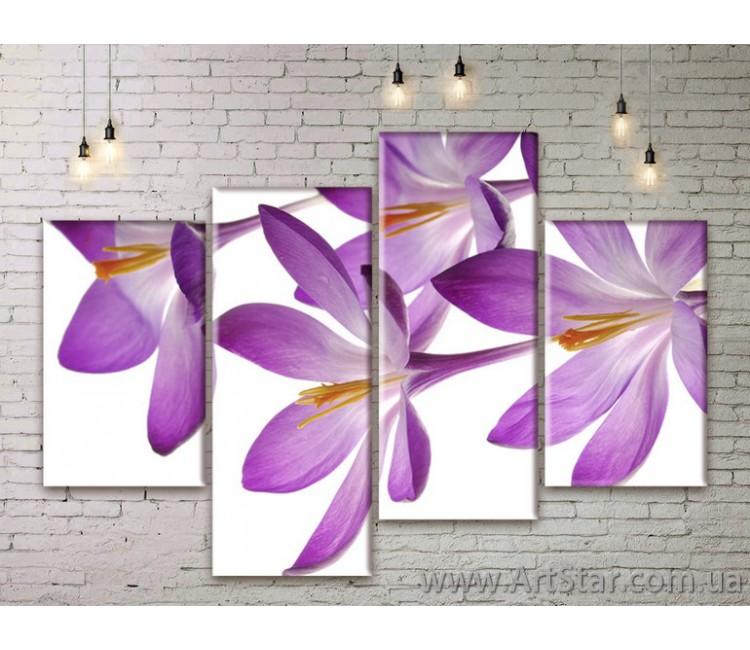 Модульные Картины Цветы, Art. FLWM0003