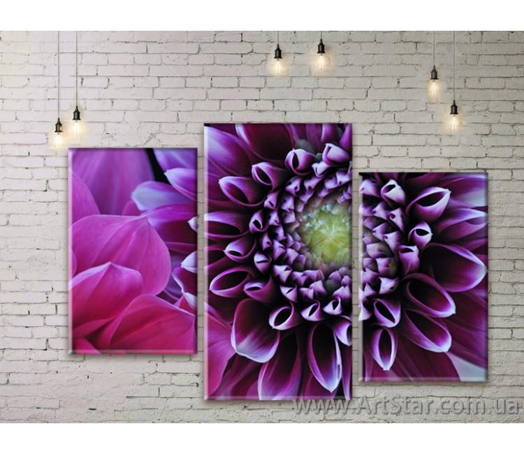 Модульные Картины Цветы, Art. FLWM0009