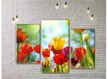 Модульные Картины Цветы, Art. FLWM0027
