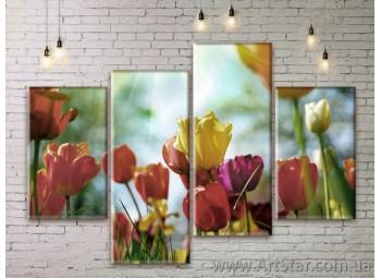 Модульные Картины Цветы, Art. FLWM0029