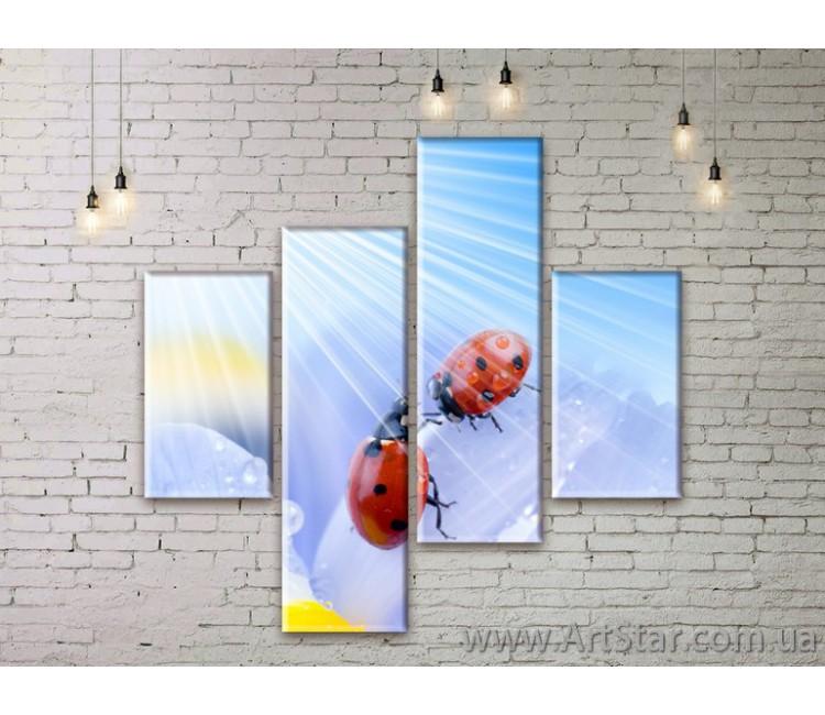 Модульные Картины Цветы, Art. FLWM0031