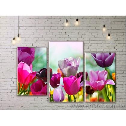 Модульные Картины Цветы, Art. FLWM0039