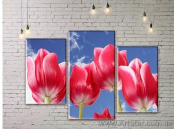 Модульные Картины Цветы, Art. FLWM0045
