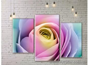 Модульные Картины Цветы, Art. FLWM0075