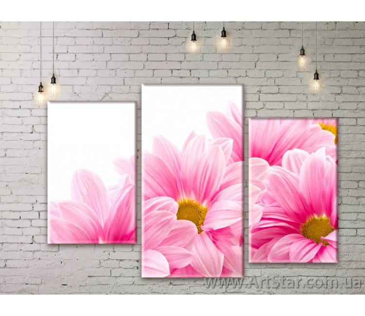 Модульные Картины Цветы, Art. FLWM0087