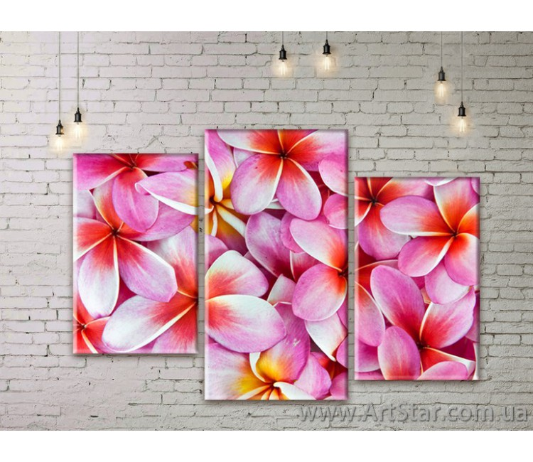 Модульные Картины Цветы, Art. FLWM0093