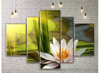 Модульные Картины Цветы, Art. FLWM0103