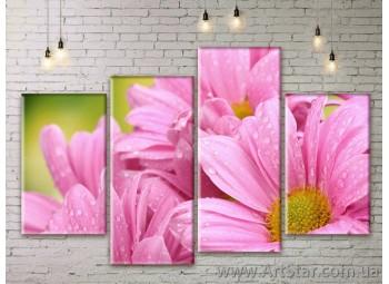 Модульные Картины Цветы, Art. FLWM0113