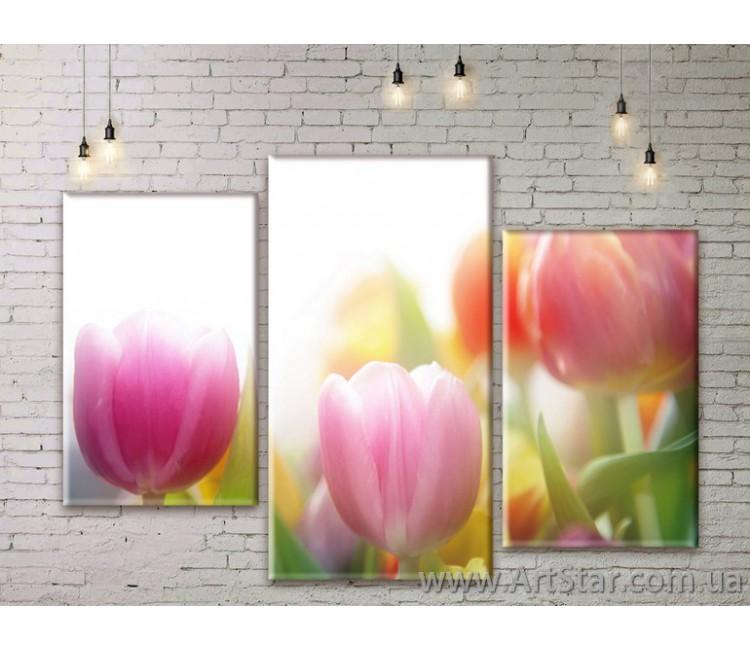 Модульные Картины Цветы, Art. FLWM0117